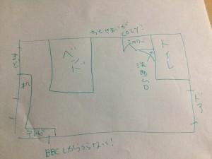 IMG_1033 (1)